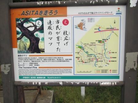 0506 連取のマツ (14).JPG