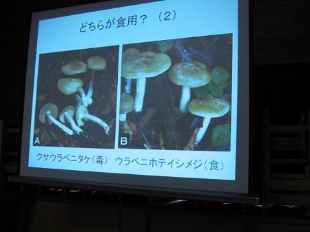 2010-10-18 (24).JPG