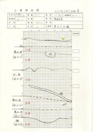 20100620 (6)●深さ1m (ノ ^ ・^)o―⊃⌒∴.jpg