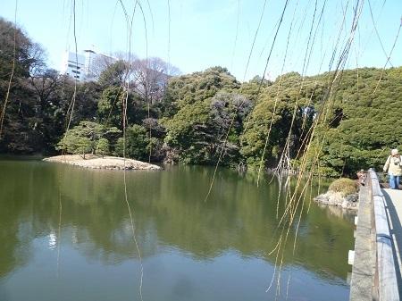 20150204 新宿御苑 (4).JPG