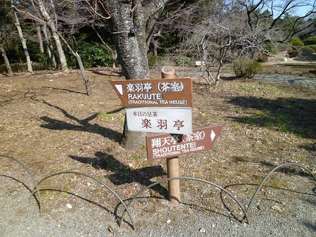 20150204 新宿御苑 (5).JPG