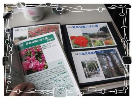 バラ園 (2).JPG