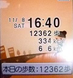 12362歩.JPG