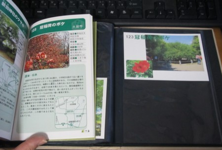 123番 冠稲荷のボケ (4).JPG